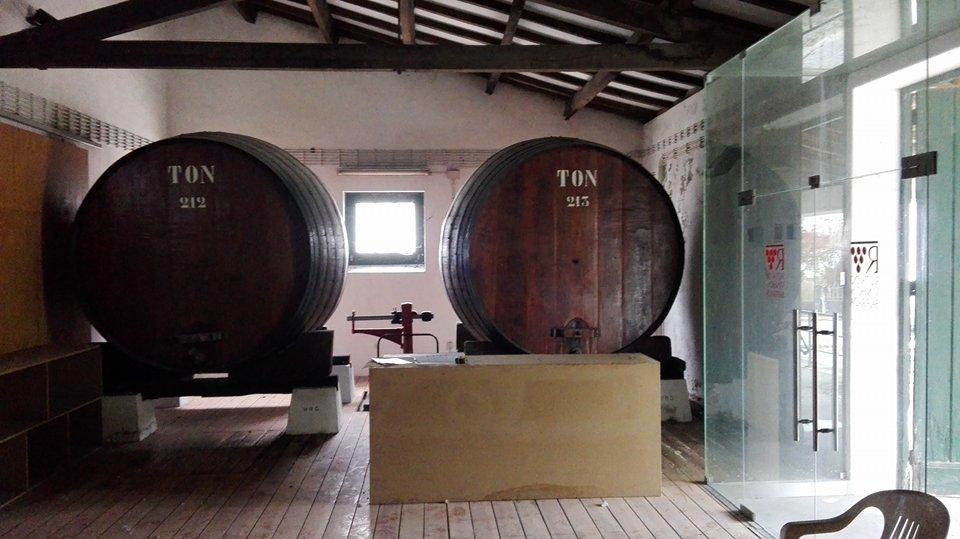 Destilaria na Mealhada dá lugar a centro para promover produtos e ideias